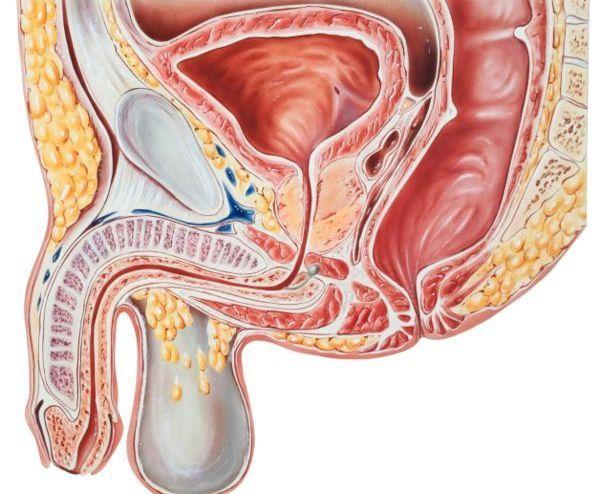 Carcinoma uroteliale chirurgia o altre terapie?