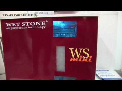 Canapa e pietra pomice per depurare l'aria: l'idea di Wet Stone