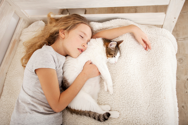 Malattie trasmesse dai gatti: la toxoplasmosi e i rischi in gravidanza