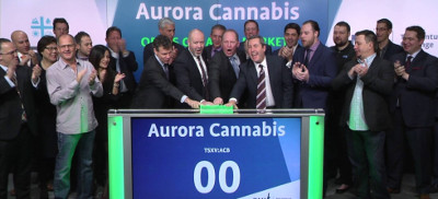 Cannabis legale. Le iniziative finanziarie e industriali