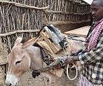 Somalia, gli aiuti alle comunità contadine Bantu isolate e discriminate