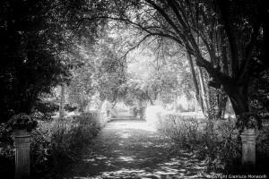 sentiero davanti la porta della villa