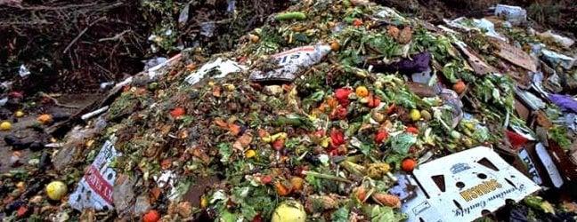 Cibo, le perdite e gli sprechi affamano il Pianeta: eliminarli servirebbe a prire i 3/5 del fabbisogno alimentare previsto entro il 2050