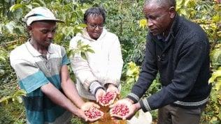 Africa, il progetto per gli immigrati da quel continente che mostrano spirito di impresa
