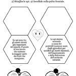 Giornata delle api: schede didattiche e idee