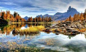 Giornata europea dei parchi: circa il 30% delle specie animali e il 50% di quelle vegetali europee si trovano in Italia.