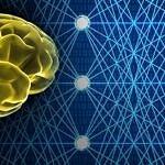 RECENSIONE: Immunologia, psichiatria e filosofia