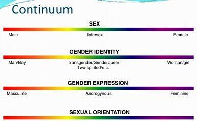 Identità di Genere, spiegato ai bambini e agli psicoanalisti