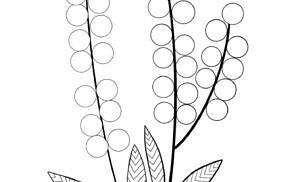 Mimose da colorare